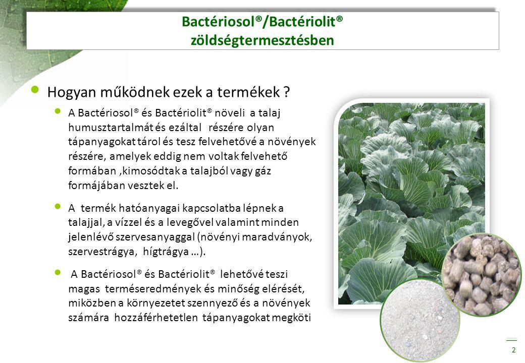 Bactériosol®/Bactériolit® zöldségtermesztésben