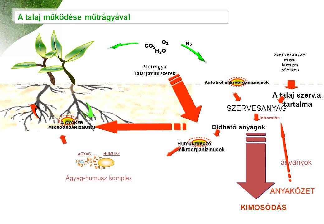 A talaj működése műtrágyával