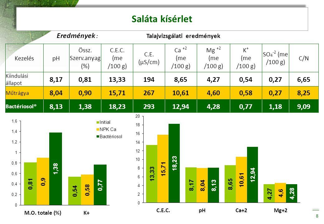 Saláta kísérlet Eredmények : Talajvizsgálati eredmények 8,17 0,81
