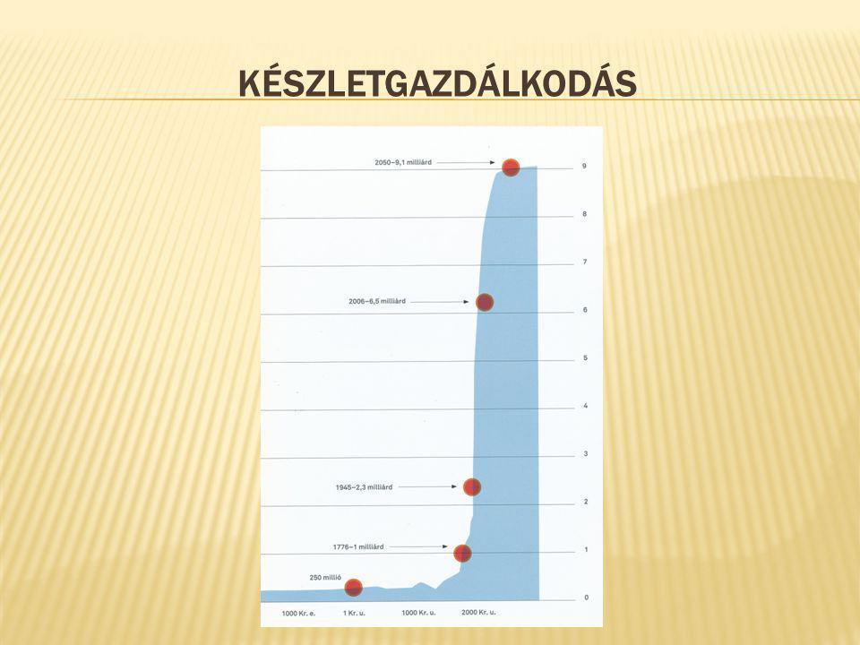 KÉSZLETGAZDÁLKODÁS
