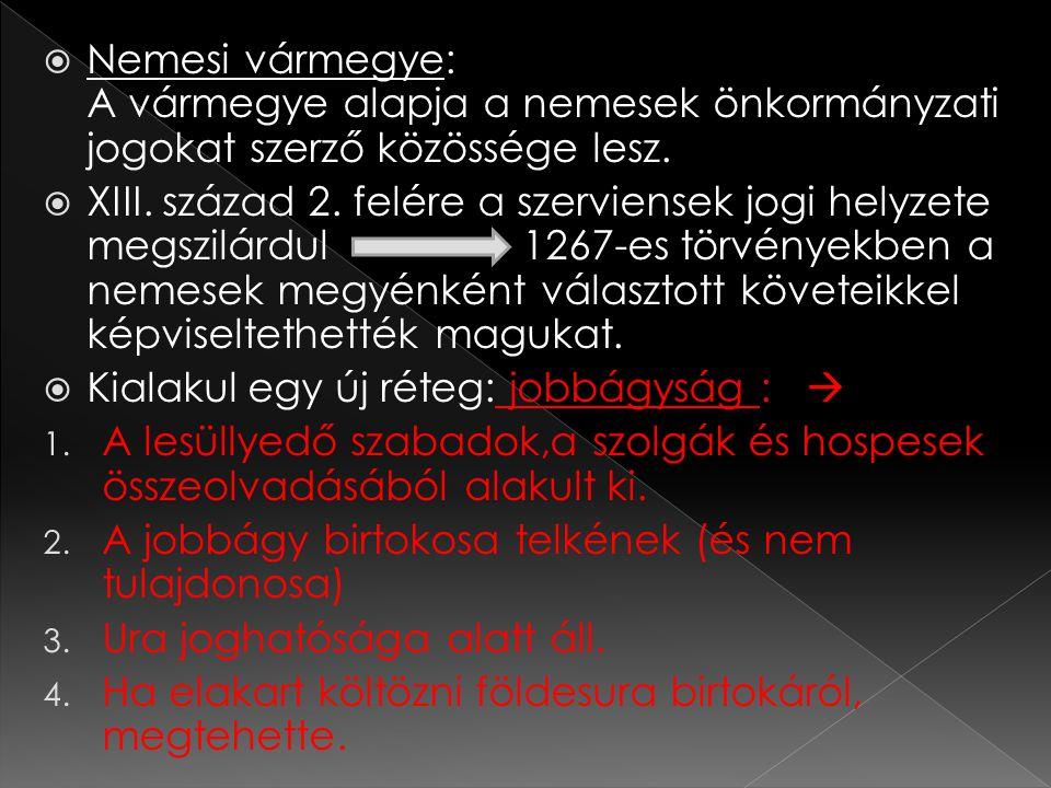 Nemesi vármegye: A vármegye alapja a nemesek önkormányzati jogokat szerző közössége lesz.