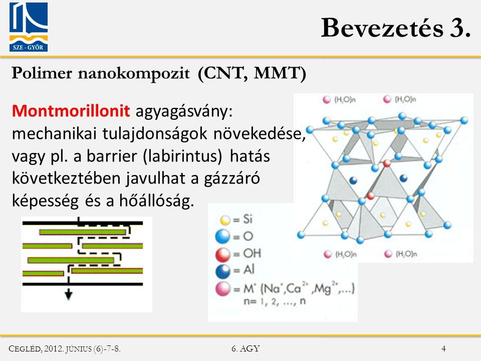 Bevezetés 3. Polimer nanokompozit (CNT, MMT)