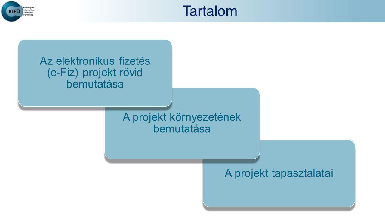 Tartalom Az elektronikus fizetés A projekt környezetének bemutatása
