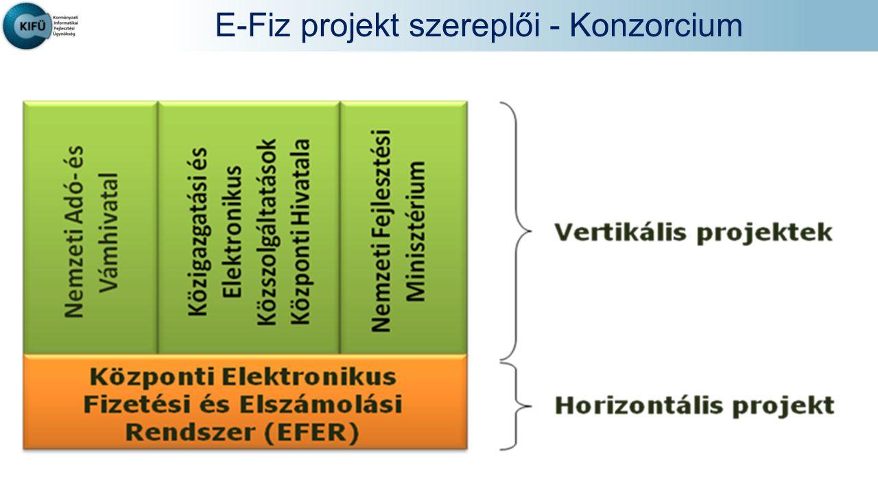 E-Fiz projekt szereplői - Konzorcium