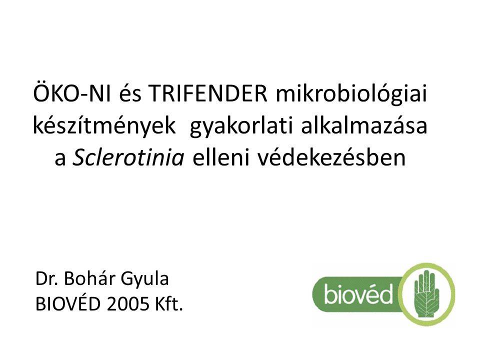 Öko-ni és Trifender mikrobiológiai készítmények gyakorlati alkalmazása a Sclerotinia elleni védekezésben