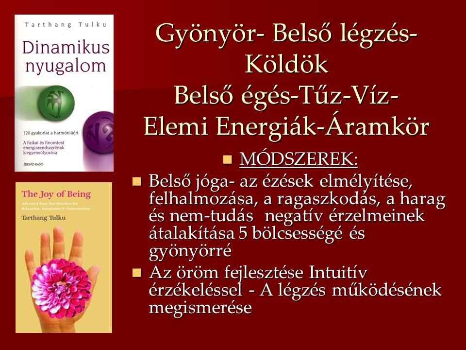 Gyönyör- Belső légzés- Köldök Belső égés-Tűz-Víz- Elemi Energiák-Áramkör