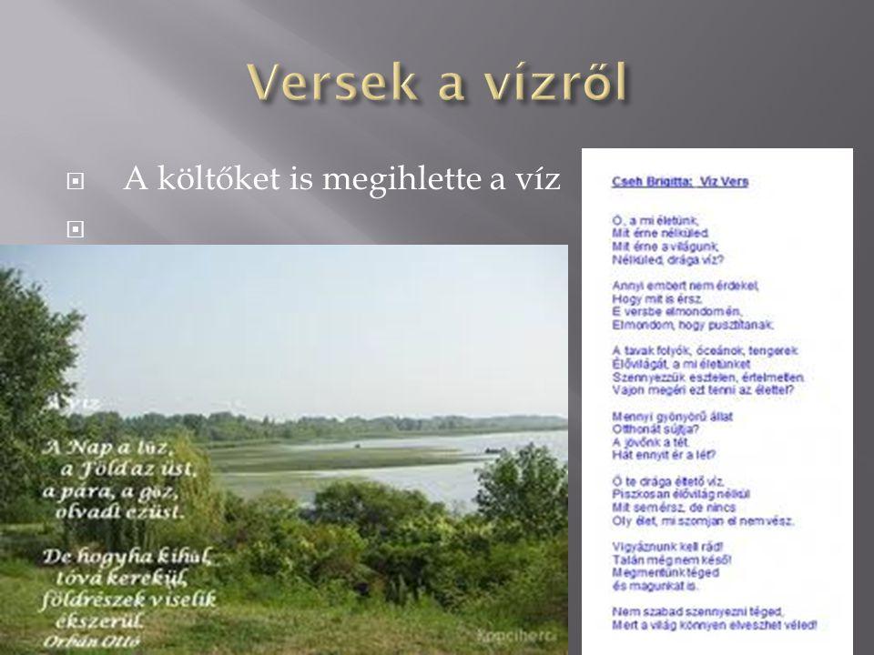 Versek a vízről A költőket is megihlette a víz
