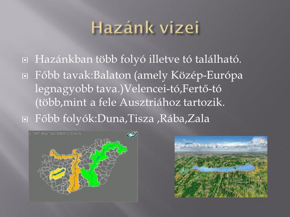 Hazánk vizei Hazánkban több folyó illetve tó található.