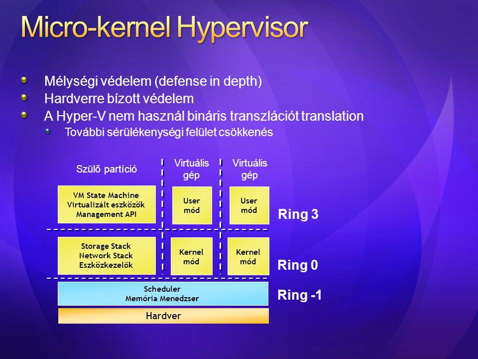 Micro-kernel Hypervisor