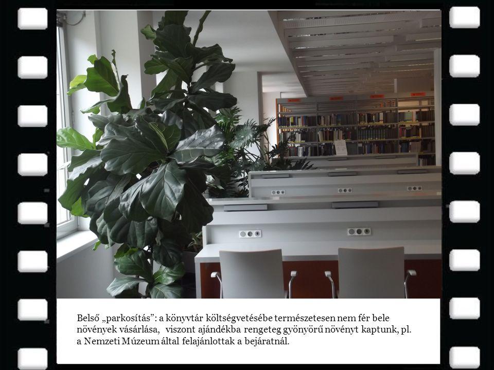 """Belső """"parkosítás : a könyvtár költségvetésébe természetesen nem fér bele növények vásárlása, viszont ajándékba rengeteg gyönyörű növényt kaptunk, pl."""