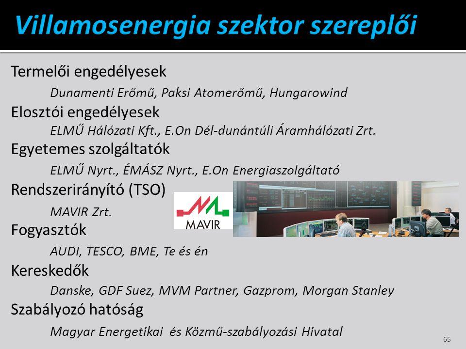 Villamosenergia szektor szereplői