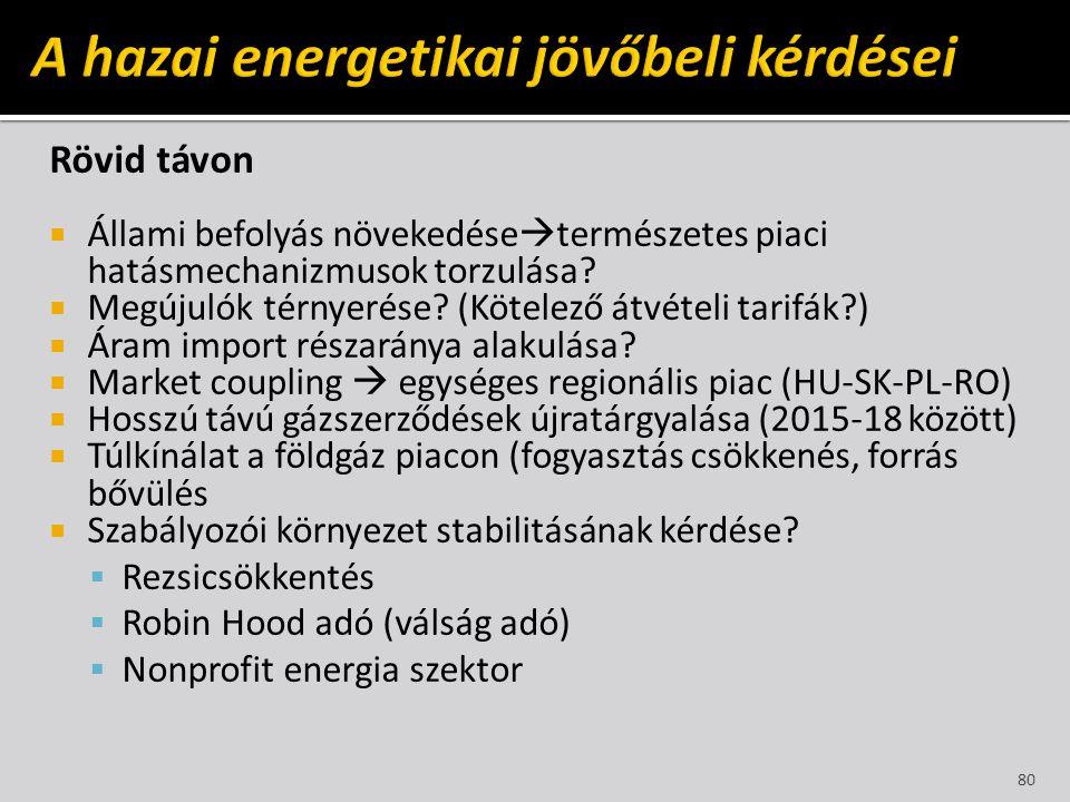 A hazai energetikai jövőbeli kérdései