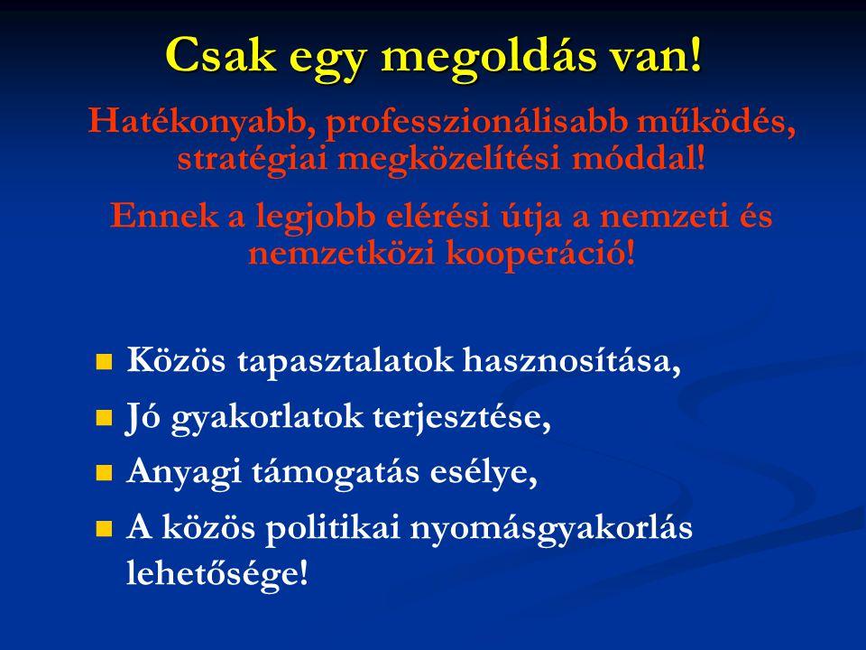 Ennek a legjobb elérési útja a nemzeti és nemzetközi kooperáció!