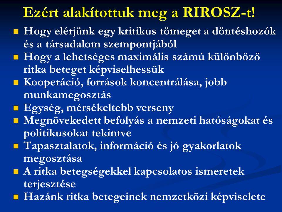 Ezért alakítottuk meg a RIROSZ-t!