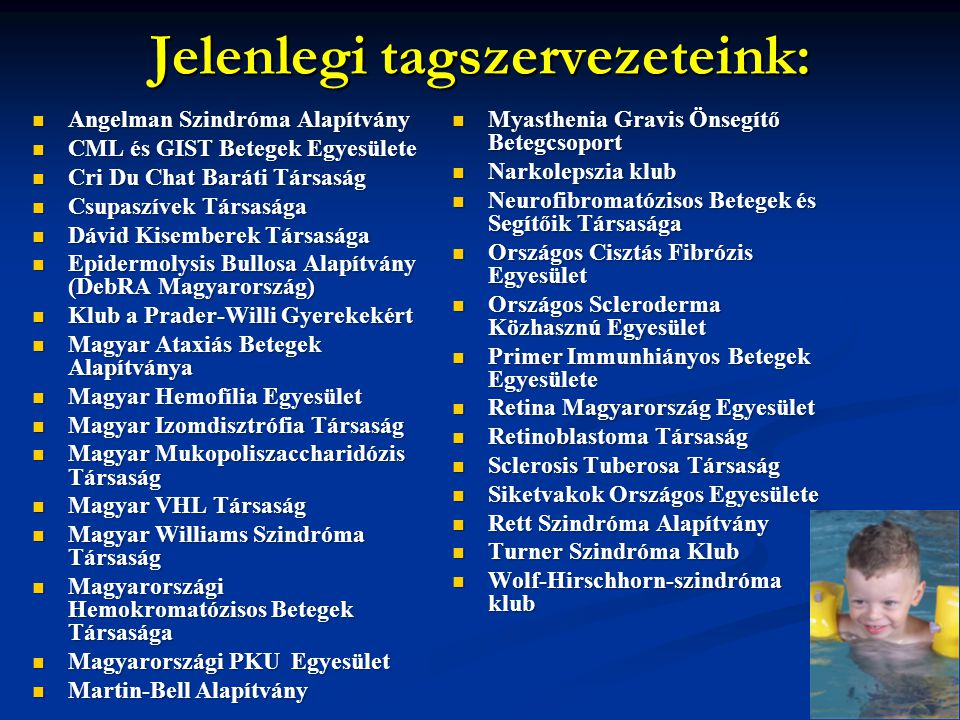 Jelenlegi tagszervezeteink: