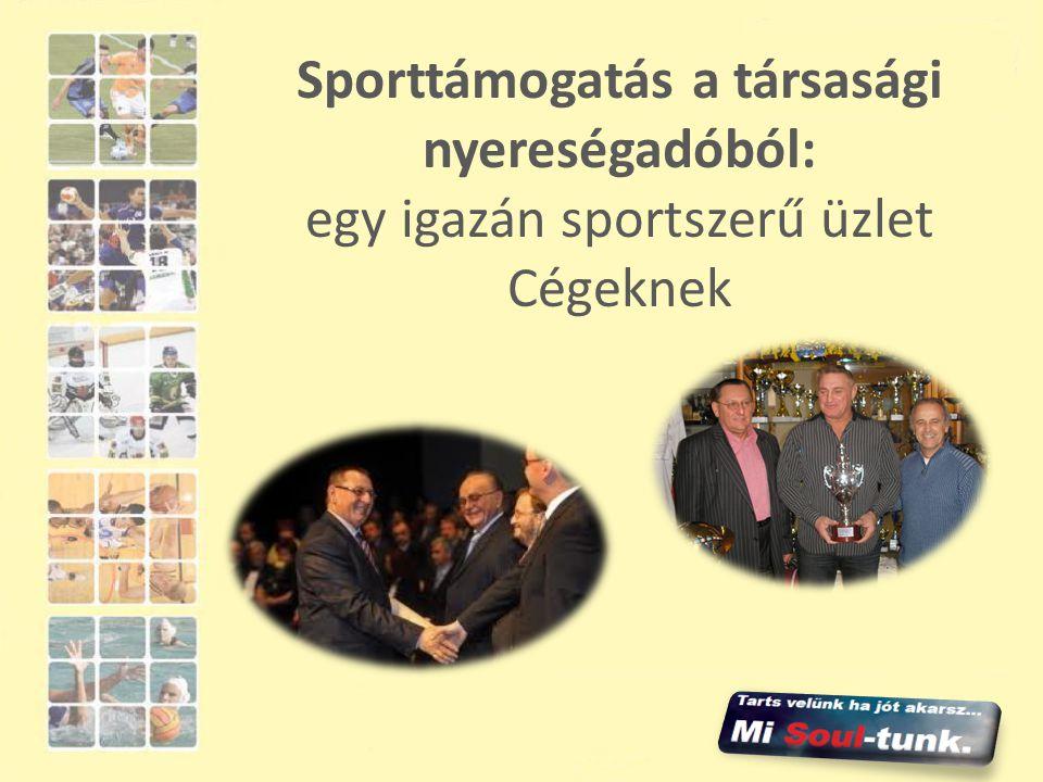 Sporttámogatás a társasági nyereségadóból: