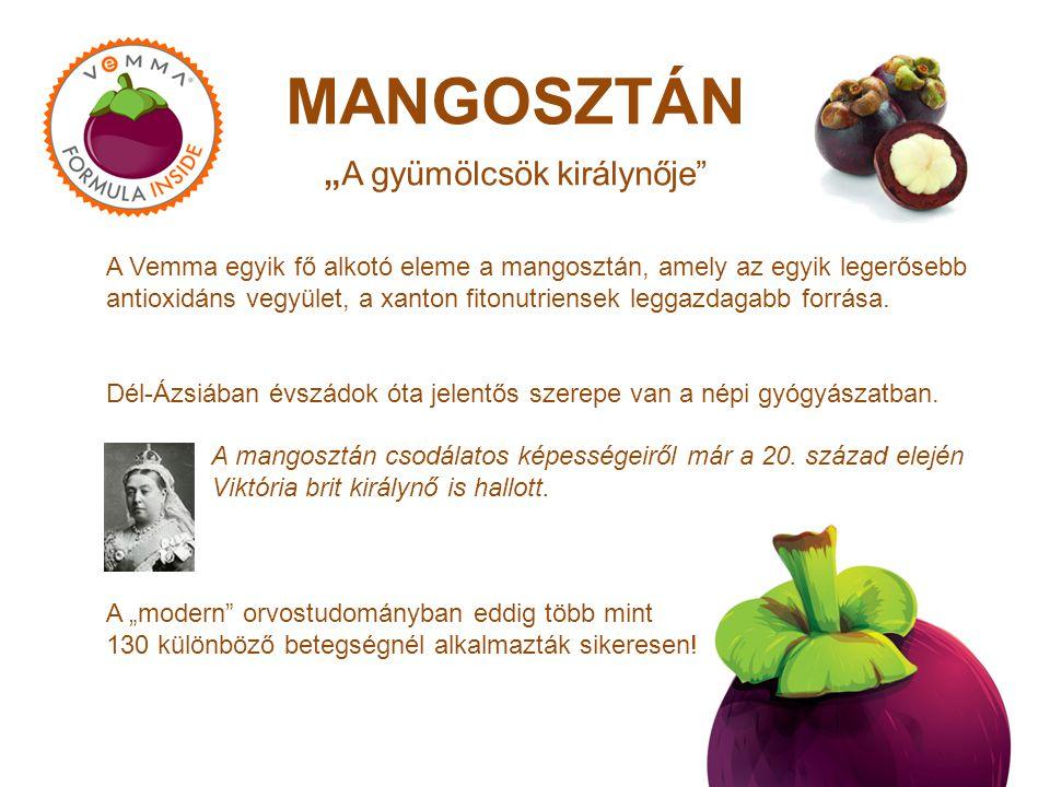 """MANGOSZTÁN """"A gyümölcsök királynője"""