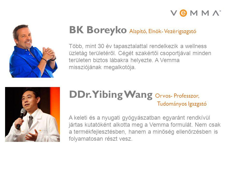 BK Boreyko Alapító, Elnök- Vezérigazgató