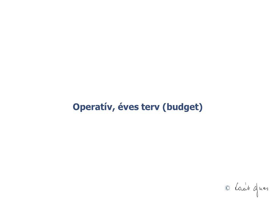 Operatív, éves terv (budget)