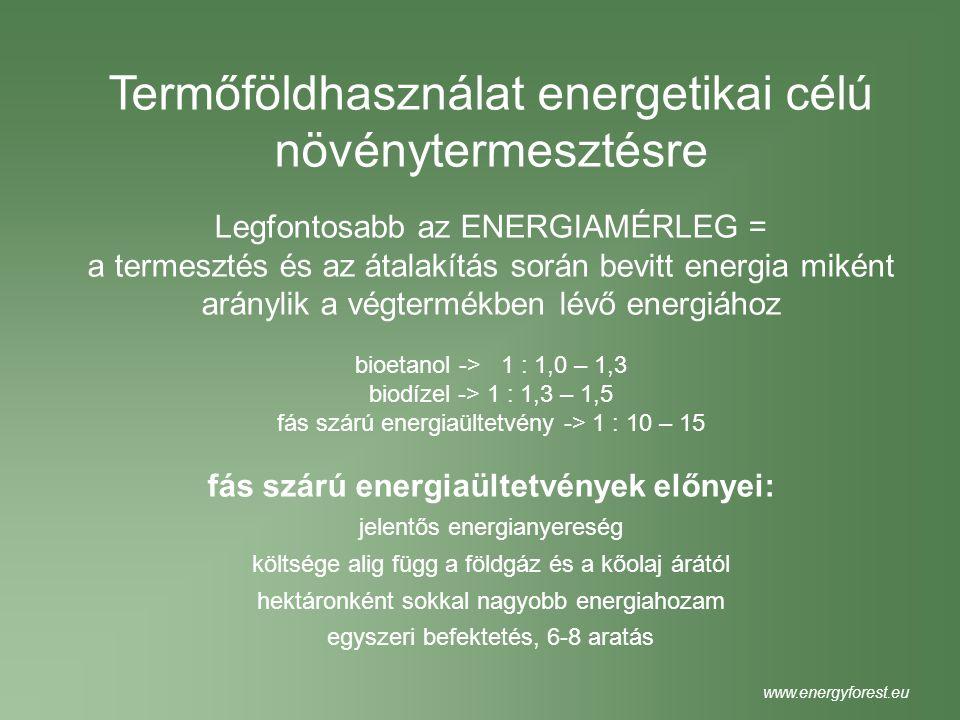 fás szárú energiaültetvények előnyei: