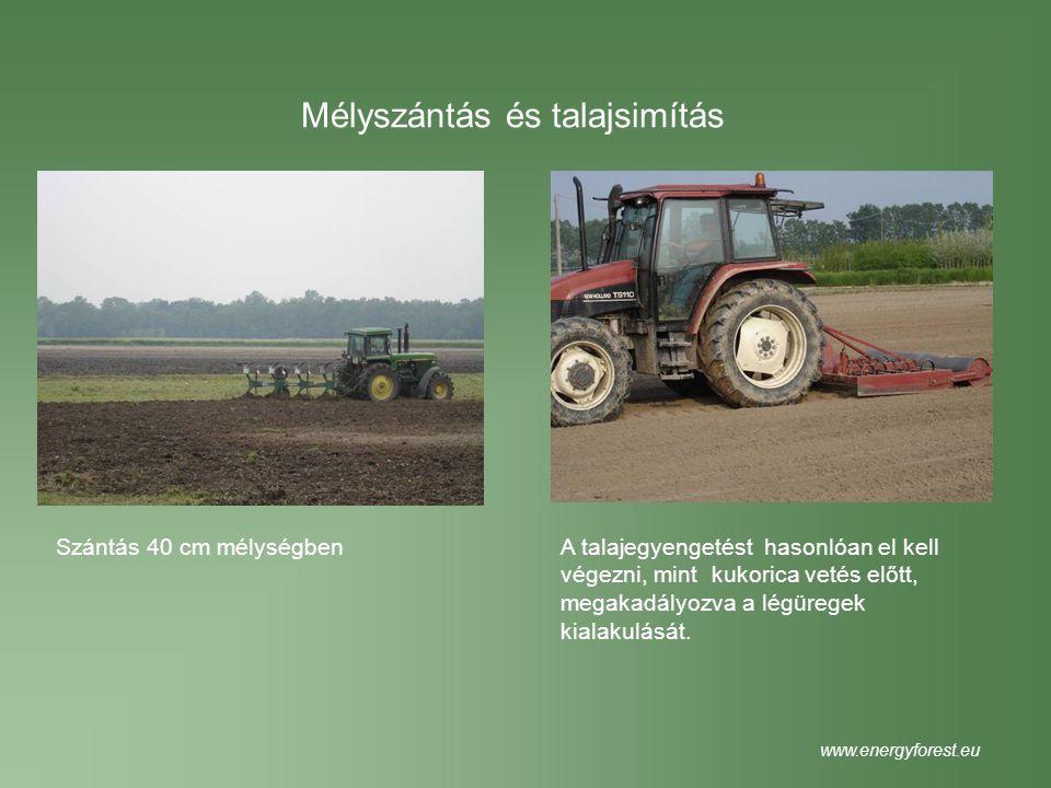 Mélyszántás és talajsimítás