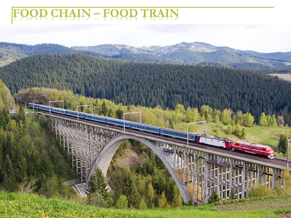 Food chain – Food train