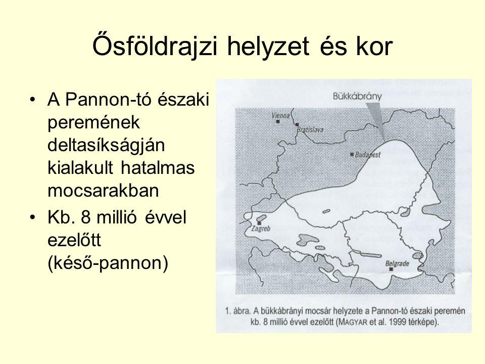 Ősföldrajzi helyzet és kor