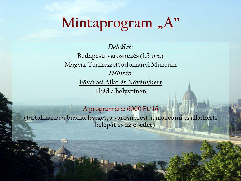 """Mintaprogram """"A Délelőtt : Budapesti városnézés (1,5 óra)"""