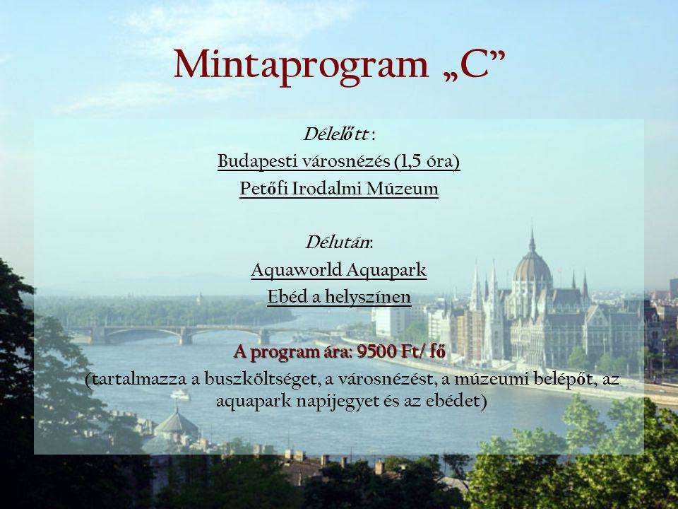 Budapesti városnézés (1,5 óra) Petőfi Irodalmi Múzeum