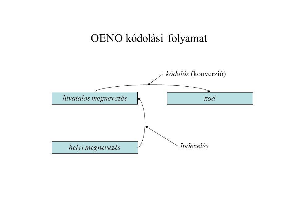 OENO kódolási folyamat