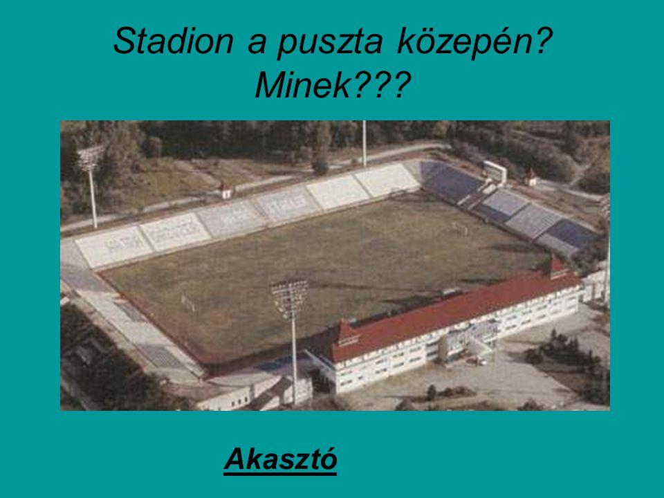 Stadion a puszta közepén Minek