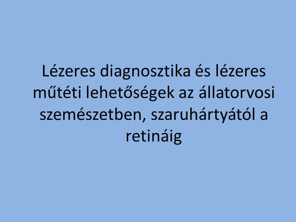 Lézeres diagnosztika és lézeres műtéti lehetőségek az állatorvosi szemészetben, szaruhártyától a retináig