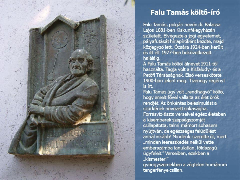 Falu Tamás költő-író