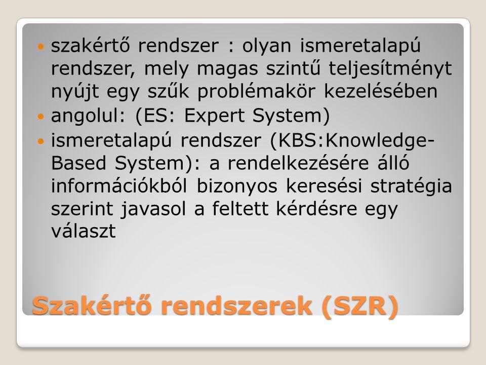Szakértő rendszerek (SZR)