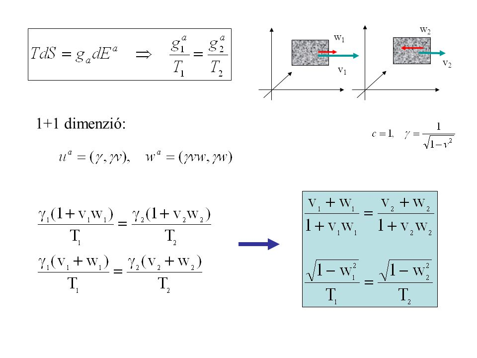 v2 w2 v1 w1 1+1 dimenzió: