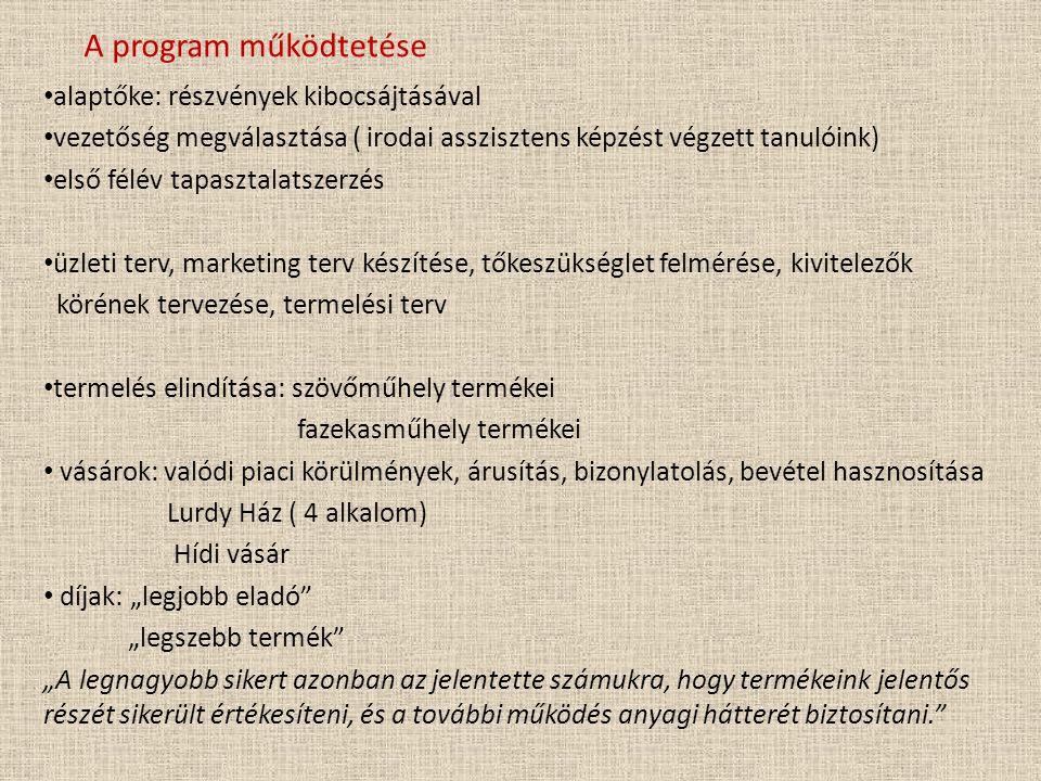 A program működtetése alaptőke: részvények kibocsájtásával