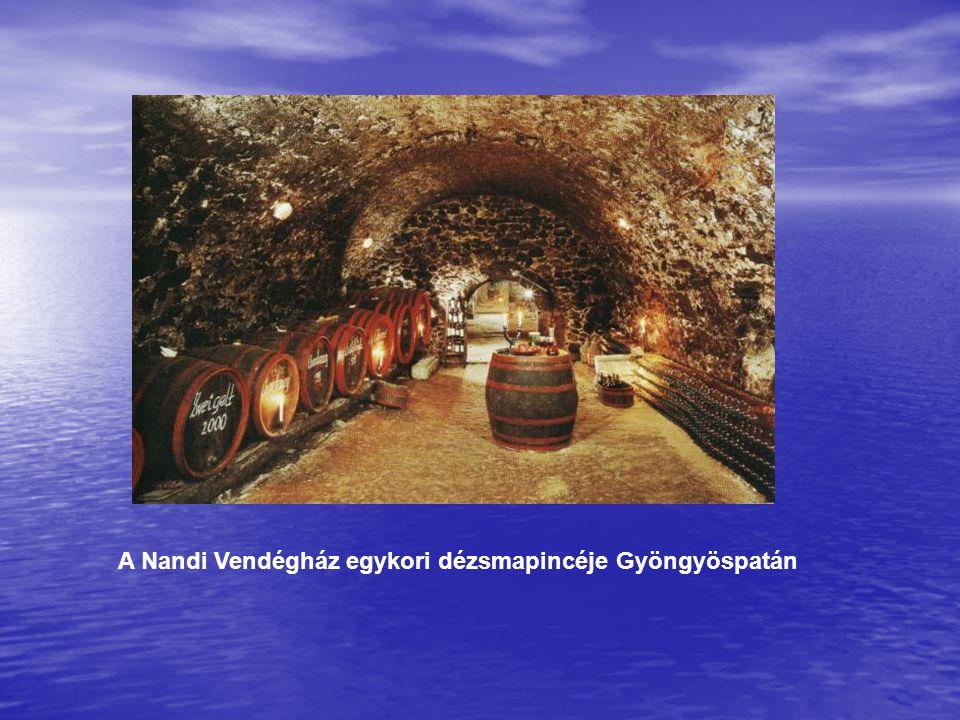 A Nandi Vendégház egykori dézsmapincéje Gyöngyöspatán