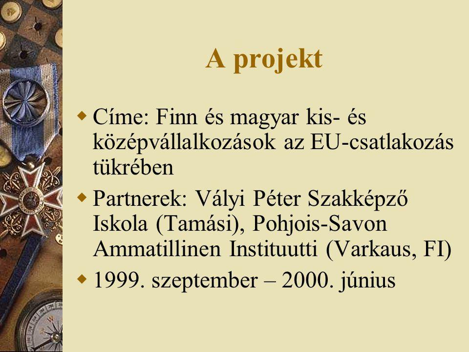 A projekt Címe: Finn és magyar kis- és középvállalkozások az EU-csatlakozás tükrében.