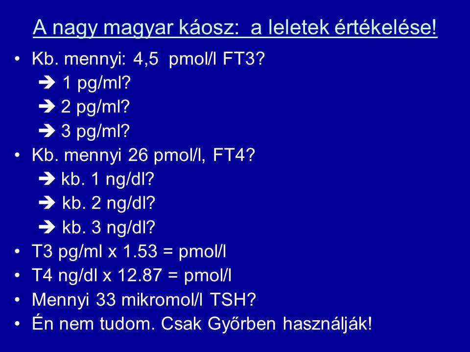 A nagy magyar káosz: a leletek értékelése!