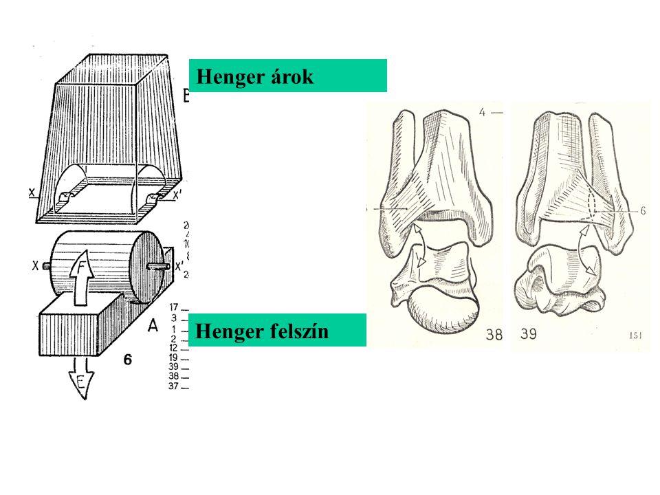 Henger árok Henger felszín