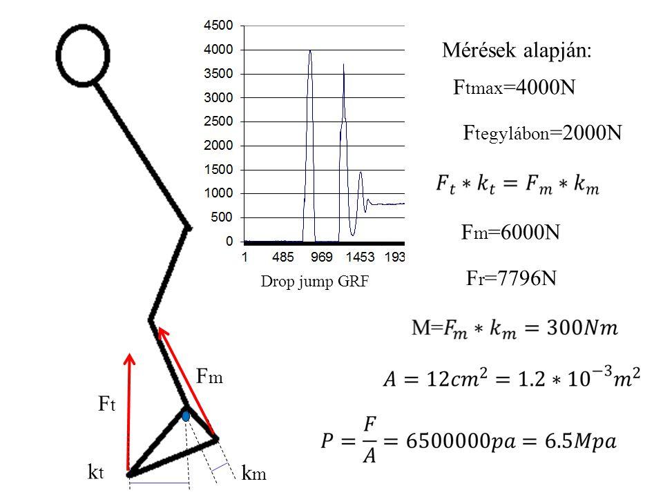 Mérések alapján: Ftmax=4000N Ftegylábon=2000N Fm=6000N Fr=7796N Fm Ft