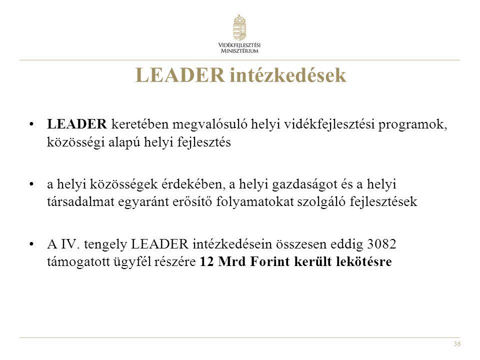 LEADER intézkedések LEADER keretében megvalósuló helyi vidékfejlesztési programok, közösségi alapú helyi fejlesztés.