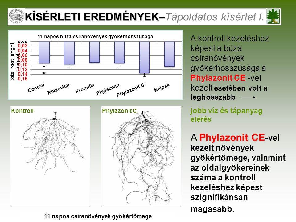 KÍSÉRLETI EREDMÉNYEK–Tápoldatos kísérlet I.