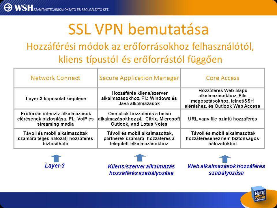 SSL VPN bemutatása Hozzáférési módok az erőforrásokhoz felhasználótól, kliens típustól és erőforrástól függően.