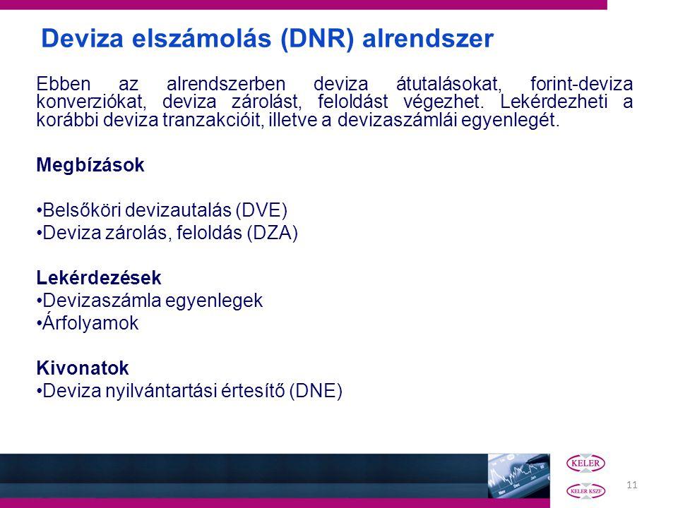Deviza elszámolás (DNR) alrendszer