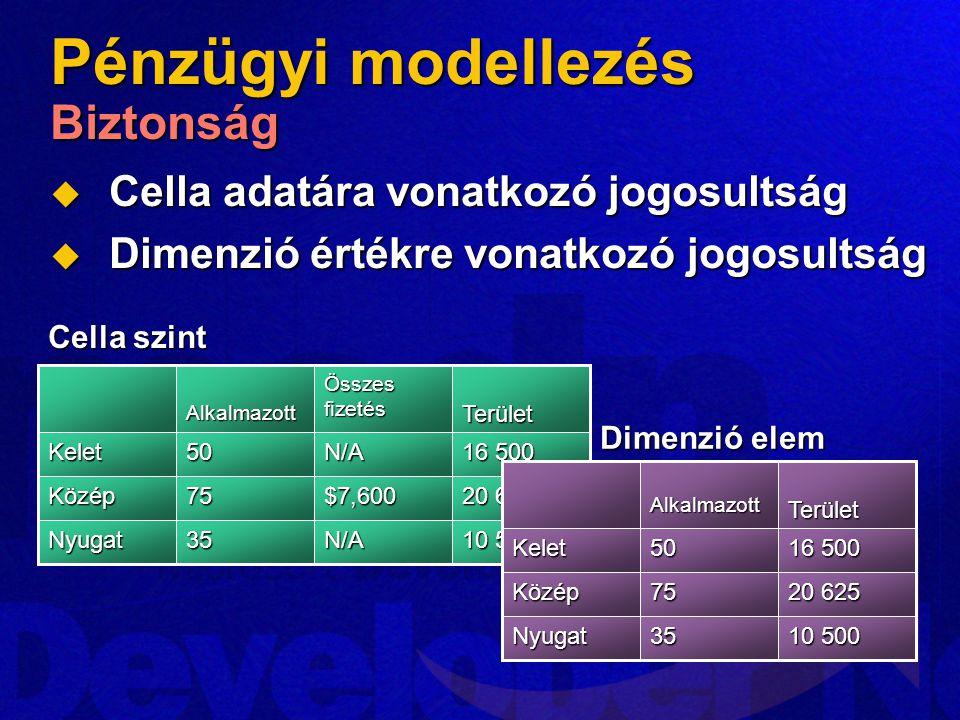 Pénzügyi modellezés Biztonság