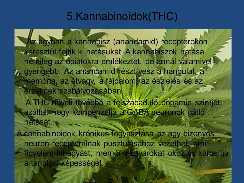 5.Kannabinoidok(THC)