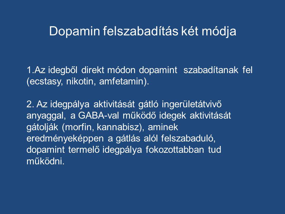 Dopamin felszabadítás két módja