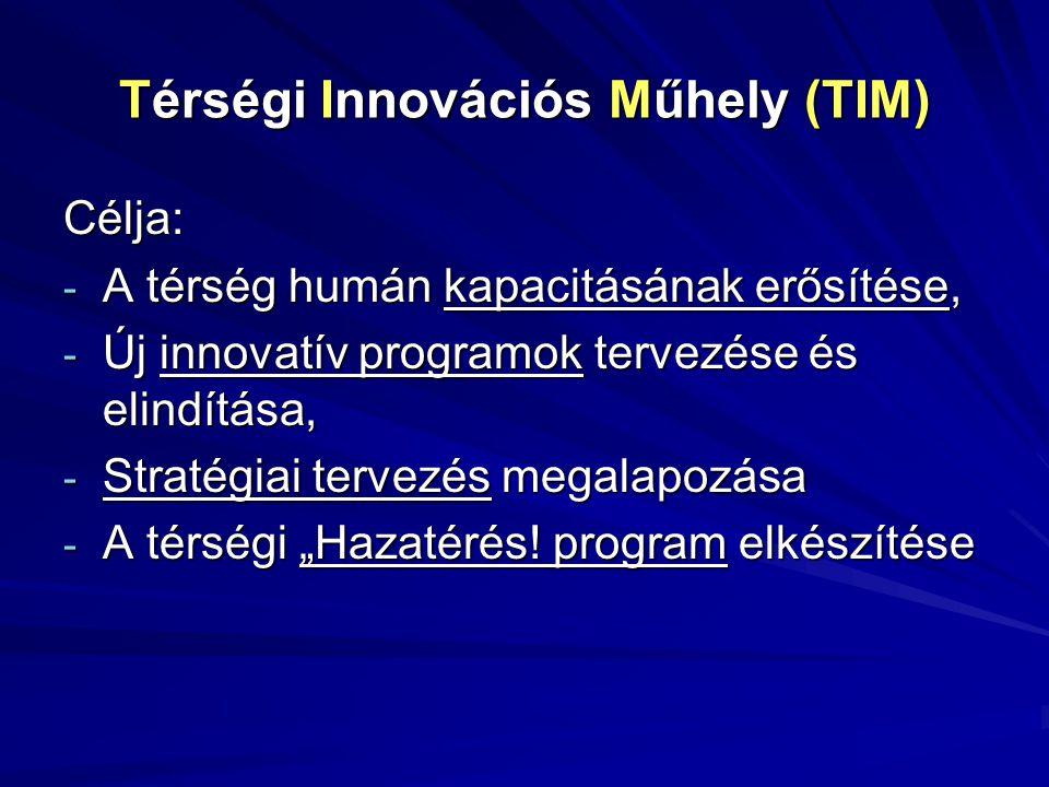 Térségi Innovációs Műhely (TIM)