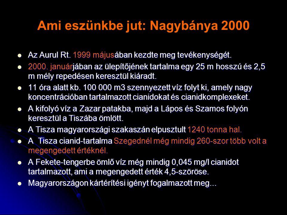 Ami eszünkbe jut: Nagybánya 2000